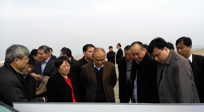 中交集团陈云_中交集团副总裁陈云考察腰沙开发项目